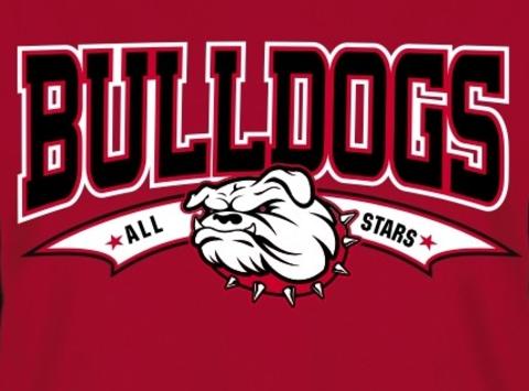 baseball fundraising - Tinley Park Bulldogs 12U Red FT Travel Team