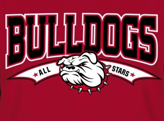 baseball fundraising - Tinley Park Bulldogs 12U Red FT Travel Team