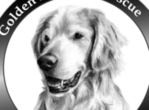 animals & pets fundraising - Golden Retriever Rescue of Southern Maryland