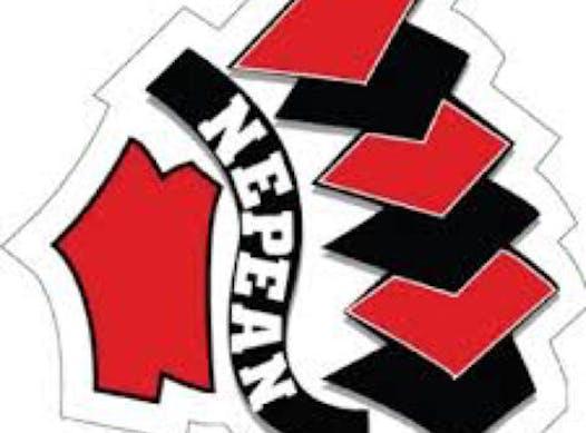 ice hockey fundraising - NMHA Minor Peewee AA