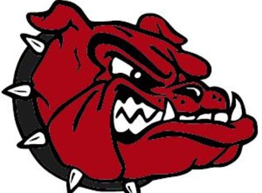 sports teams, athletes & associations fundraising - Roxbury Red Dogs Travel Baseball Program