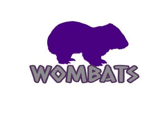 baseball fundraising - Wombats