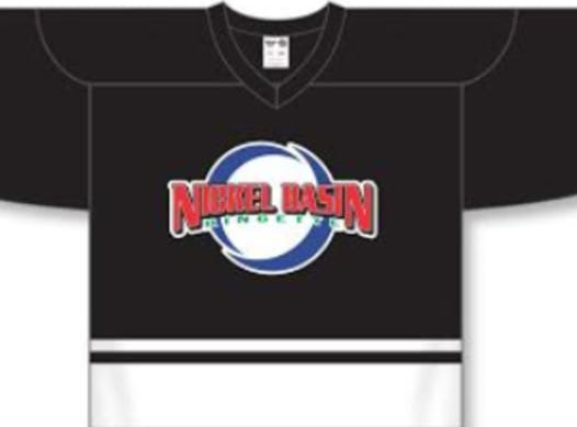 ringette fundraising - Nickel Basin U12PP Ringette Team