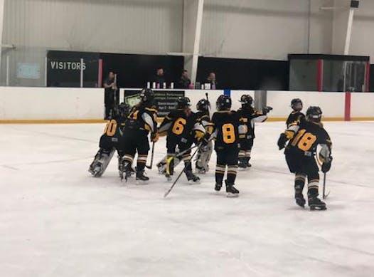 ice hockey fundraising - Waterloo Ravens Novice B 2018-19