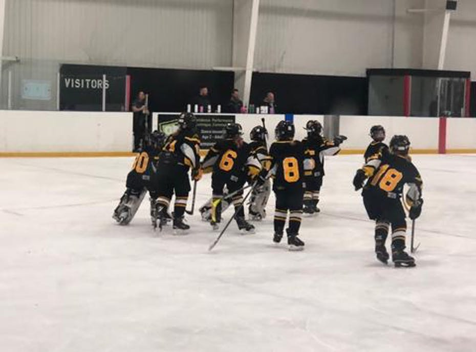 Waterloo Ravens Novice B 2018-19