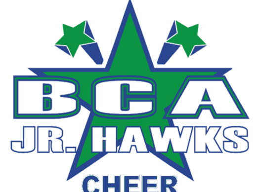 sports teams, athletes & associations fundraising - Bartlett Cheerleading Association