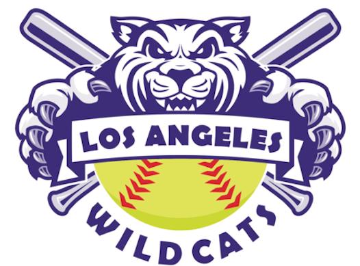 baseball fundraising - Wilshire Wildcats of Los Angeles