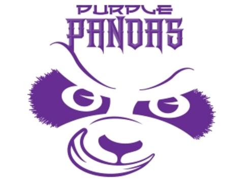 ringette fundraising - U10S1-3 Purple Pandas
