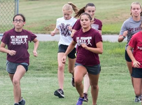 other sport fundraising - Mount Vernon Wildcats Girls Cross Country & Track