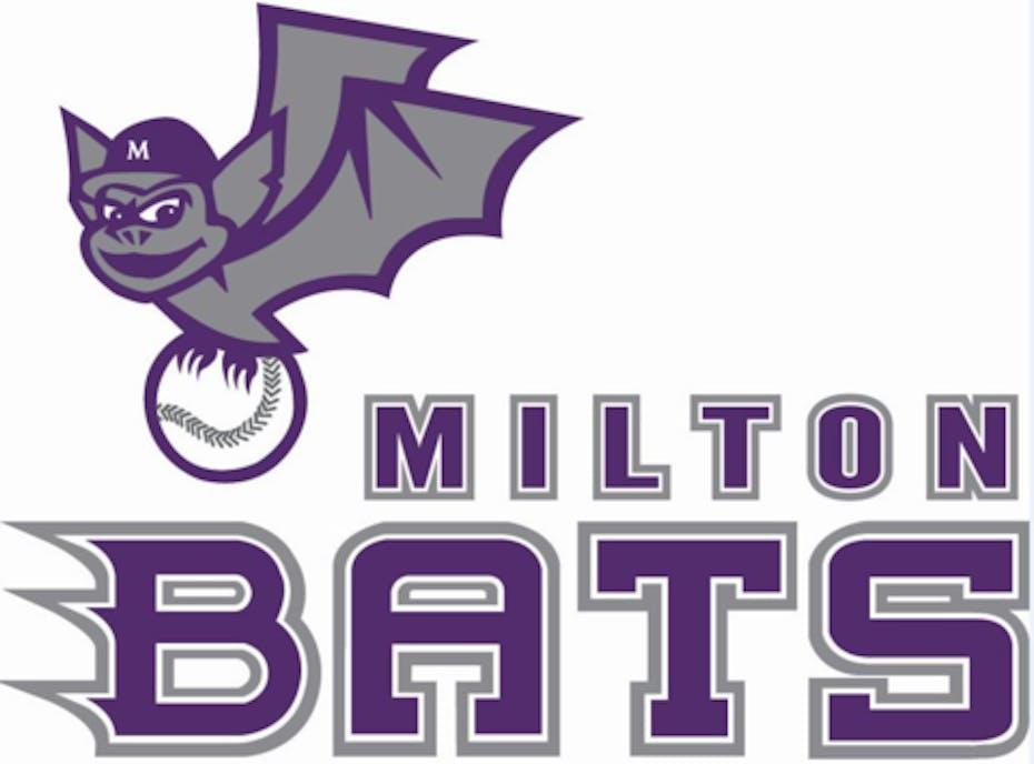 2019 Milton Bats U10 Purple