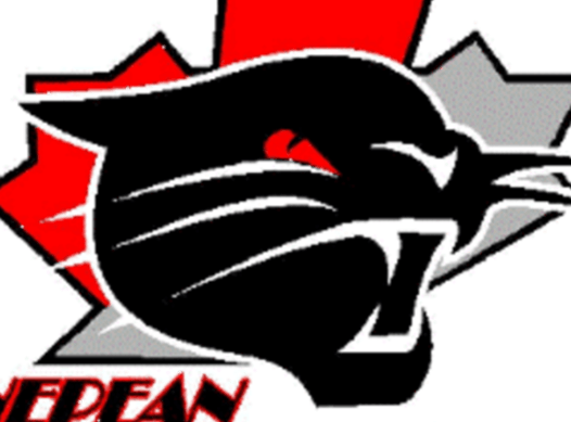 ice hockey fundraising - Nepean Wildcats ACA (2018-2019)