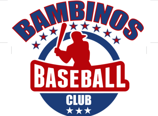 sports teams, athletes & associations fundraising - BAMBINOS Baseball Club