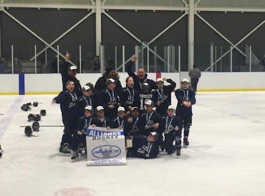 ice hockey fundraising - GLHA Atom Selects Team 2 (Hitchcock)