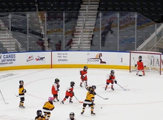 ice hockey fundraising - Sherwood Park Tigers (Initiation)