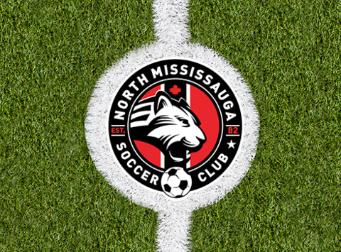 indoor soccer fundraising - NMSC BU10 - Winter 2018/19
