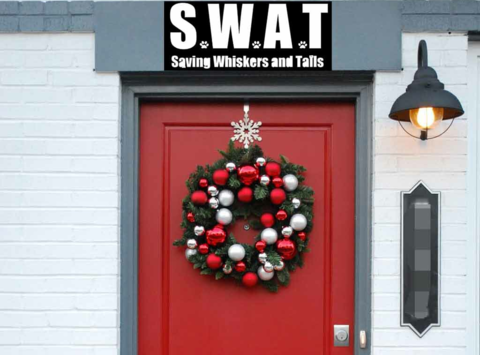 animals & pets fundraising - Saving Whiskers And Tails, Ltd. (SWAT)