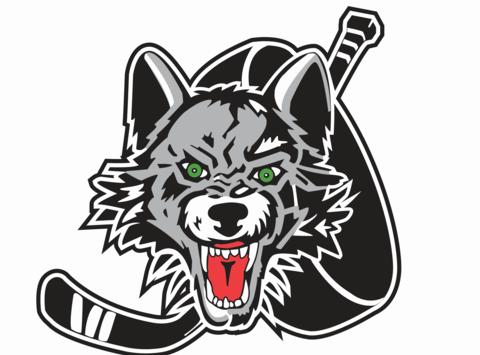 ice hockey fundraising - Dundurn Arctic Wolves