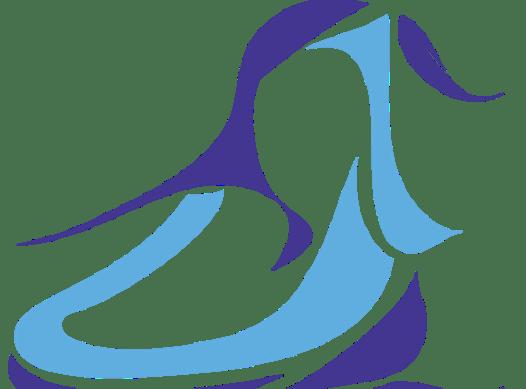 figure skating fundraising - CPA Malobiannah FSC