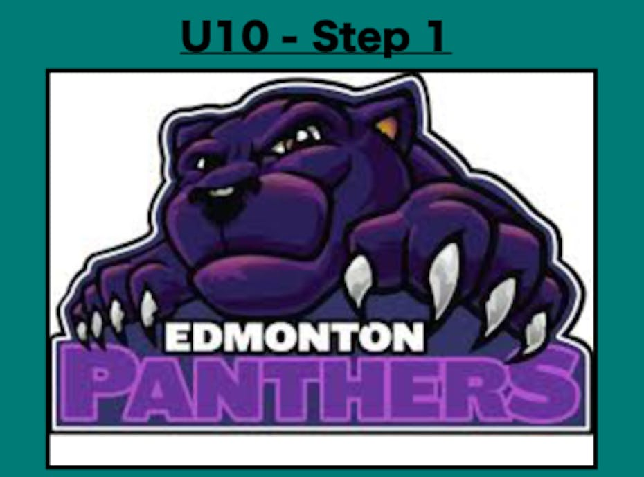 U10 Ringette -Panthers