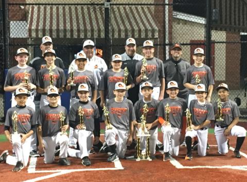 baseball fundraising - LI JR Ducks  Rising Stars
