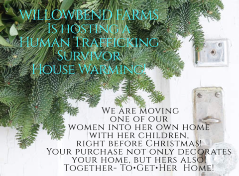 other organization or cause fundraising - Christmas House Warming For Human Trafficking Survivors- WillowBend Farms