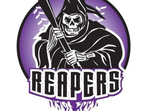 softball fundraising - Lady reapers