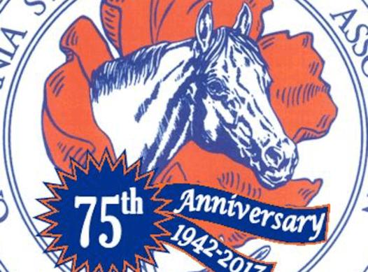 equestrian fundraising - 2019 CSHA Region 6 Wreath Fundraiser