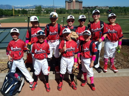 baseball fundraising - Power Alley Baseball