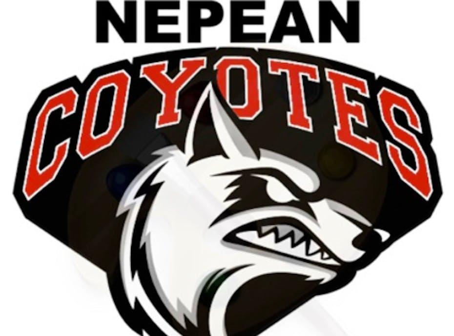 Coyotes - 2018-2019 NMHA Peewee C Team C
