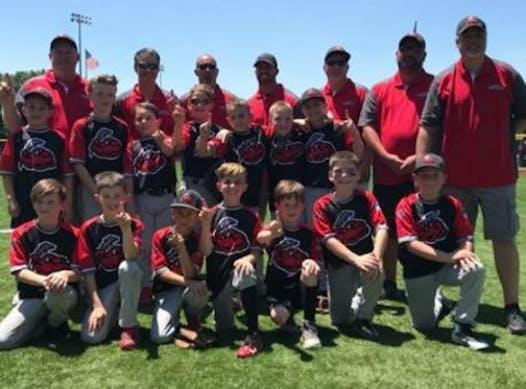 baseball fundraising - Jackson Thunder
