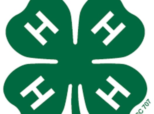 4-h fundraising - Lonesome Dove 4H Club