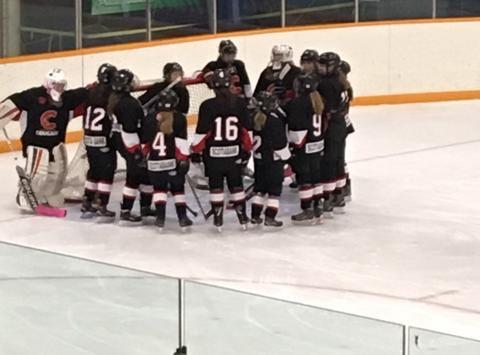 ice hockey fundraising - PG PeeWee Female Cougars