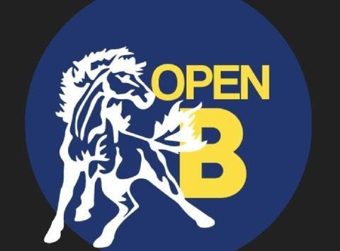 ringette fundraising - Mississauga Mustangs Open B