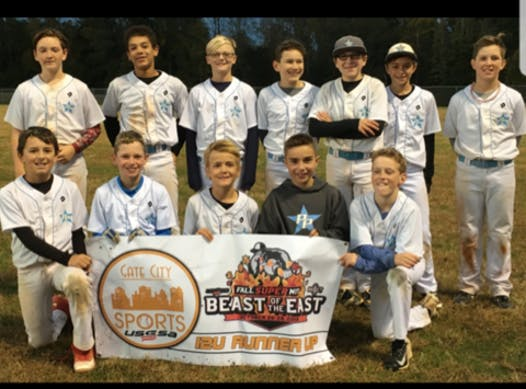 baseball fundraising - 12U Proehlific Power