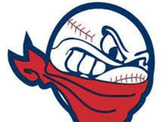 baseball fundraising - Bloomington Renegades 11U Blue