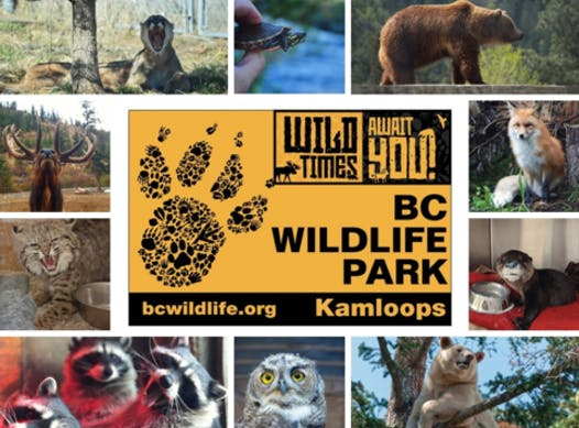 other organization or cause fundraising - BC Wildlife Park