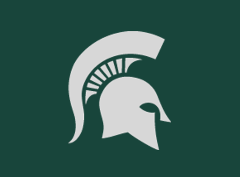 school sports fundraising - Michigan State Club Dodgeball