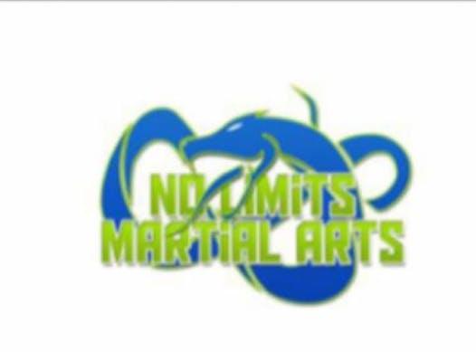 martial arts fundraising - No Limits - DGDL5B