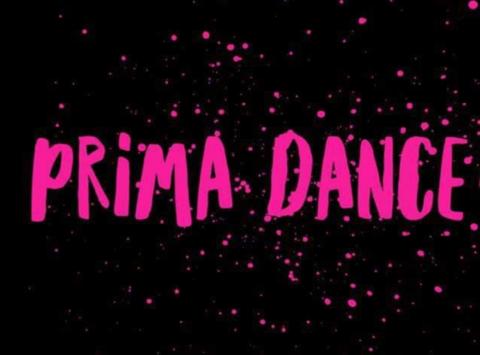 dance fundraising - Prima Dance Mini All-Stars