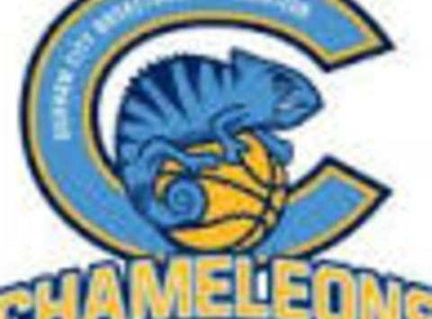 other sport fundraising - DC Atom Chameleons