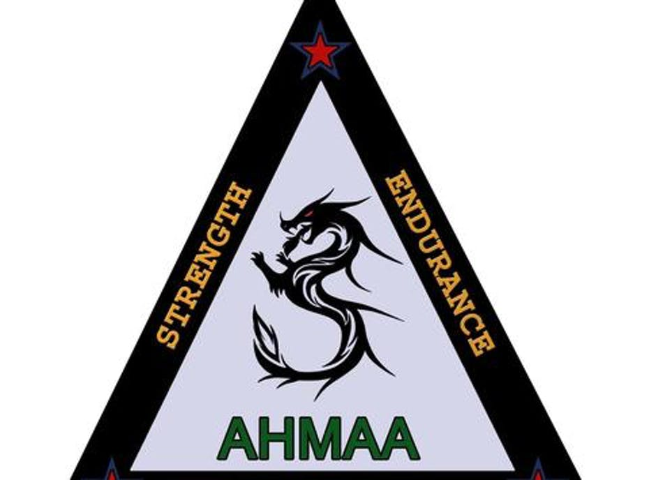 Aim High Martial Arts Academy