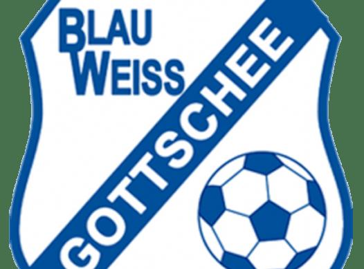 soccer fundraising - BW Gottschee 2010
