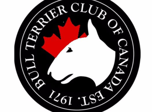 animals & pets fundraising - Bull Terrier Club of Canada