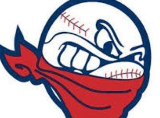 baseball fundraising - 11U Renegades
