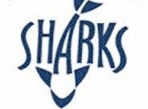 swimming fundraising - PA Sharks