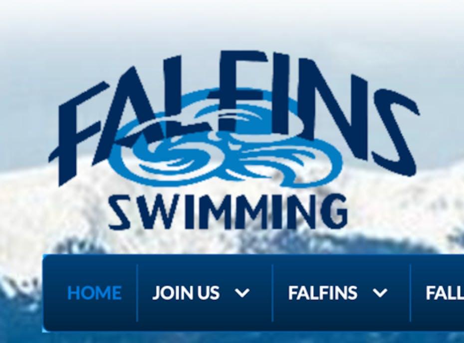 AFA Falfins