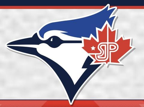 baseball fundraising - U15 SJP Blue Team