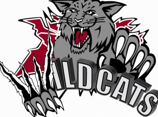 ice hockey fundraising - Southwest Wildcats