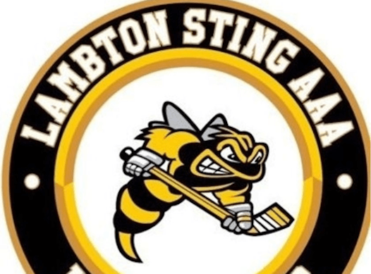 ice hockey fundraising - Lambton Jr Sting AAA Minor Bantam