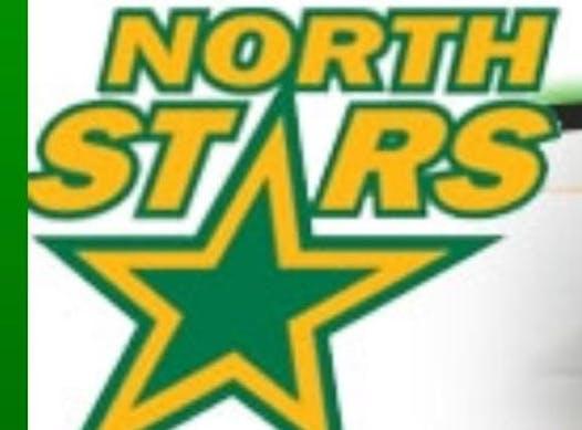 ice hockey fundraising - 2009 Mississauga North Stars